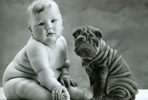 Babies and Animals! / by Kristyn Baer
