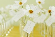 Escort card inspiration