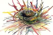 Empty Nest / by Fran Vincent