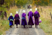 A simpler life-Everything Amish / Enjoy a Simpler time  / by Barbara Schmid