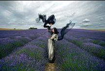 Fashion Photography / Ideas for Fashion Photography