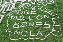 Students Rebuild One Million Bones Challenge / Students Rebuild joined the One Million Bones project, CARE and Global Nomads Group to create 1,000,000 handmade bones as a visible petition against humanitarian crises. Students worldwide made bones as a symbol of solidarity with victims and survivors of ongoing conflict in Somalia and the Democratic Republic of Congo (DRC.)   http://studentsrebuild.org/find-challenge/one-million-bones-challenge