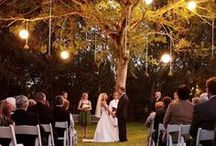 Maddie & TJ Wedding / by Diana Prince