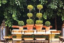Porches Patios Alfresco Dining / outdoor entertaining dining and relaxation  / by Kathryn Myrick @   K Rossi & Company
