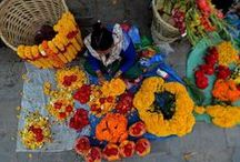 Flower Garland Ideas / Need ideas for your flower garlands for the #SRNepal Challenge? Here are examples to inspire your garland-making teams during the  Challenge! Learn more about the Flower Garlands for Nepal Challenge here: http://studentsrebuild.org/nepal