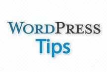 Wordpress Tips / SBI! is a business-building product that has a 15-year history of the highest rates of online business success. When a recent study demonstrated how poorly most WordPress solopreneurs do, we developed a for-WordPress version of SBI!. http://www.sitesell.com/sbiforwp/ Here are some tips for using Wordpress as a solopreneur.