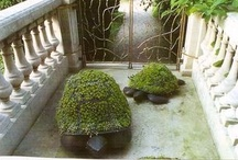 OUTDOOR SPACE / by Nichole Herr