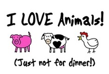 Vegan Ⓥ / Animal Rights / by Melissa Bravo