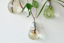 Eco Style