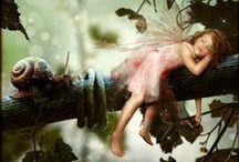 Fairy Secrets / by Laura Johnson