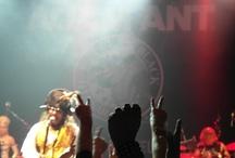 adam ant 2012