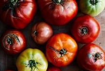 Building a Sustainable Food System