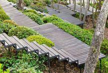 Luscious landscape design