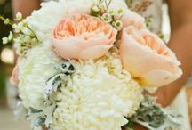 Dream Wedding / by Courtney Murphy