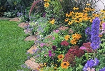 Gardening & Landscaping / by Ruth Myers