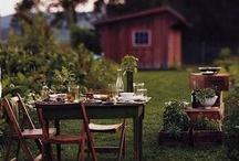 Home | Yard & Patio