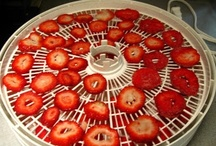 Dehydrating/Rehydrating Food / by Ruth Myers