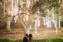 WEDDING! / Marys wedding thoughts
