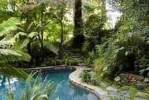 Natural Gardens ✿