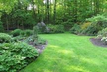 Garden - Landscaping Garden Yard