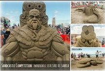 sculture sabbia & ghiaccio .. / by 'Luisa Saviotti