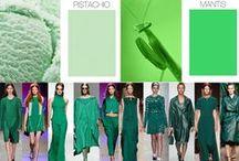 c. verde,tutte le sfumature