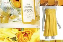 c. giallo come il sole / by 'Luisa Saviotti