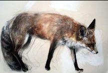Beautiful Animal Artwork