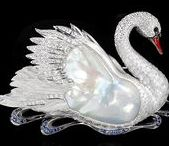 O  R  N  I  T  H  O  L  O  G  Y / the bird and the jewel.