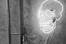 S K E L E T O N   C R E W / Skulls, skellies and bones