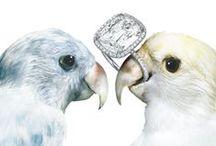 ❂ S H I N E   O N   Y O U   C R A Z Y   D I A M O N D ❂ / jewellery - diamonds