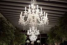 ~Chandeliers / by The Stuart Rental Company