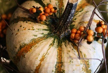 Fall into Autumn / by Gina Duncan