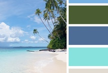 Color Palettes  / by Joyce Hicks