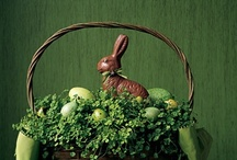 Easter-here comes Peter cottontail