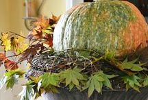 Celebrate Fall / The colors, smells, and comforts of the season are rich and exciting. Let's have a celebration!