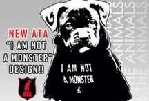 Designs: Arm The Animals / #armtheanimals / by Arm The Animals Clothing