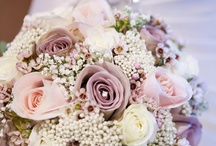 My Wedding. '13 / by Kate Clancy