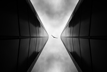 Architecture / by Ana Djordjevic