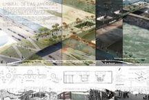 Arch Presentations / by Roxy Lagwagon