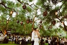 {Hailey + Adam} / Where old Hollywood romance meets wine country, farm to fork elegance.