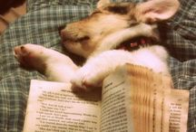 Books Worth Reading / by Alyssa Matos
