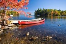 New England  / Lifestyle Native to New England