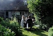 garden / garden loveliness