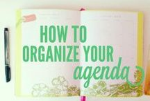 Organization / by Lindsey Potter