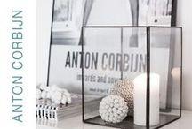 ♥ ANTON CORBIJN