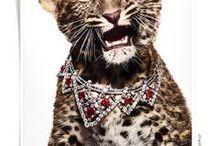Jewellery / by Luisa Pedroso | Jewellery Designer