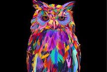 Owls / by Lisa Bennett