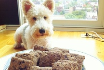 Fox Foodie / Recipes and shopping tips for a Wire Fox Terrier on a gently cooked diet. / by Ears Up!