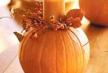 Thanksgiving / by Stacey Felberg Sullivan